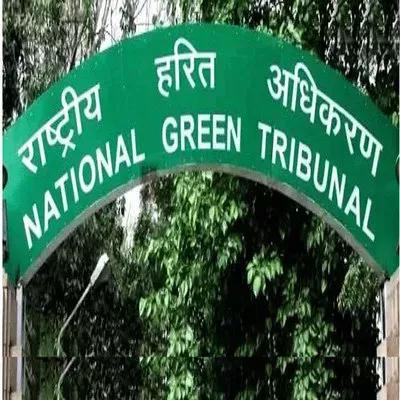 Explain reasons for not sealing illegal borewells: NGT
